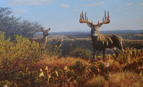 Texas Trophy - Milton Parnick George Buck