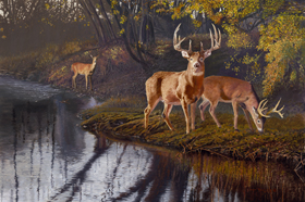 Autumn Treasures Oil Painting by Pat Pauley