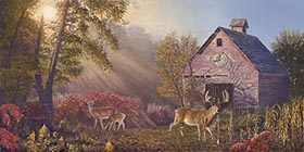 Whitetail Heaven by Pat Pauley